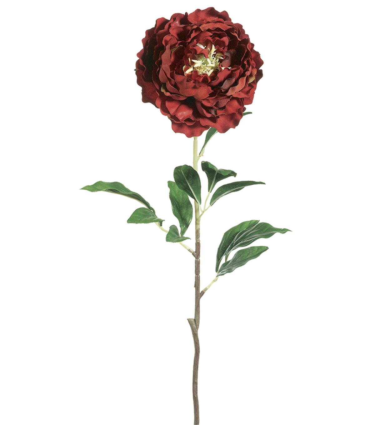 Bloom Room 32.5\u0022 Peony Stem-Red