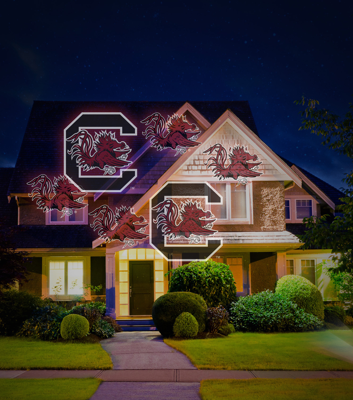 South Carolina Team Pride Light Projector