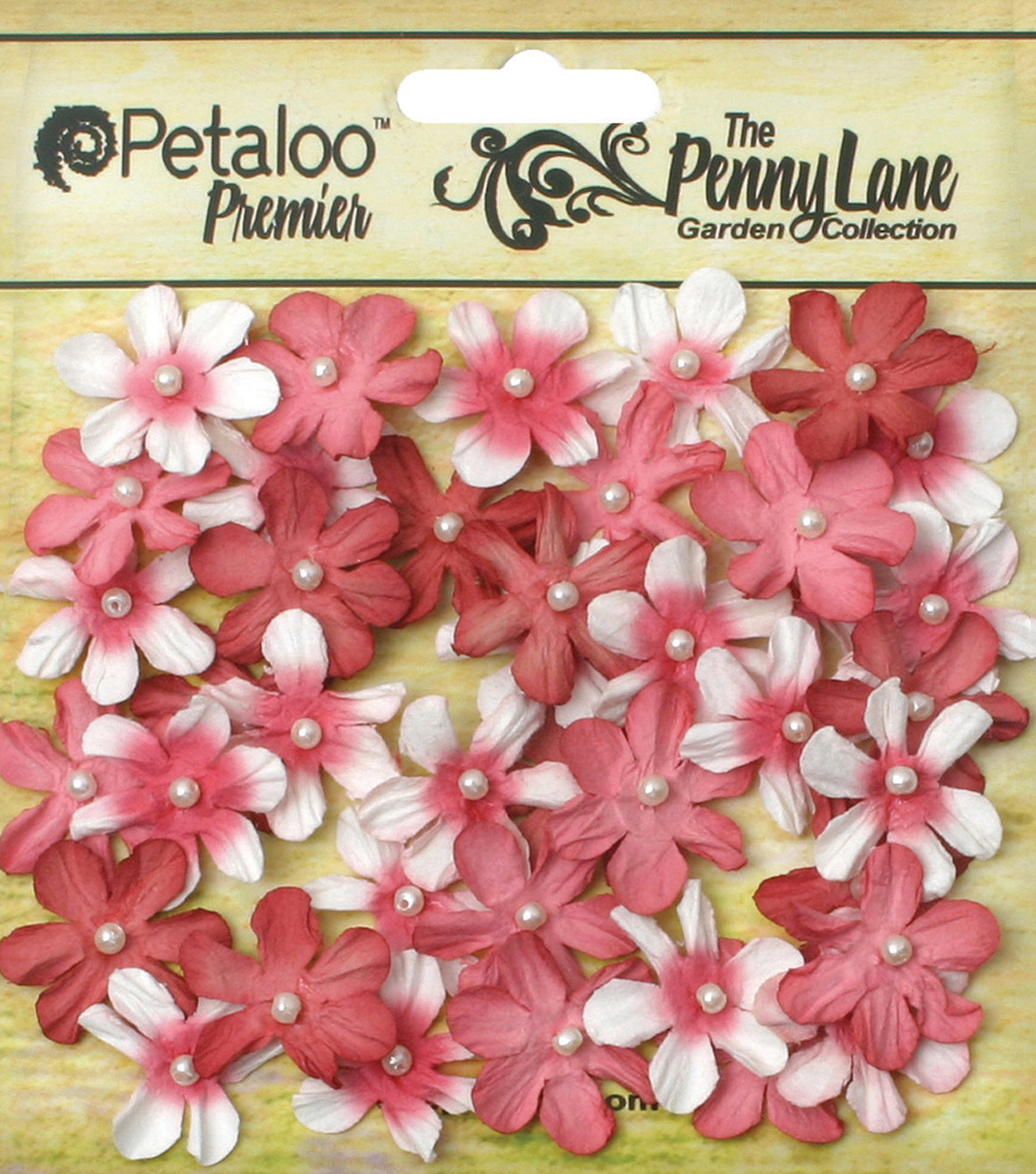 Petaloo Penny Lane Mini 40pcs 0.75\u0027\u0027 Pearl Daisies