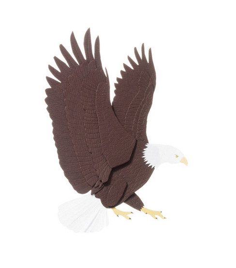 Jolee's By You Dimensional Embellishment-Bald Eagle