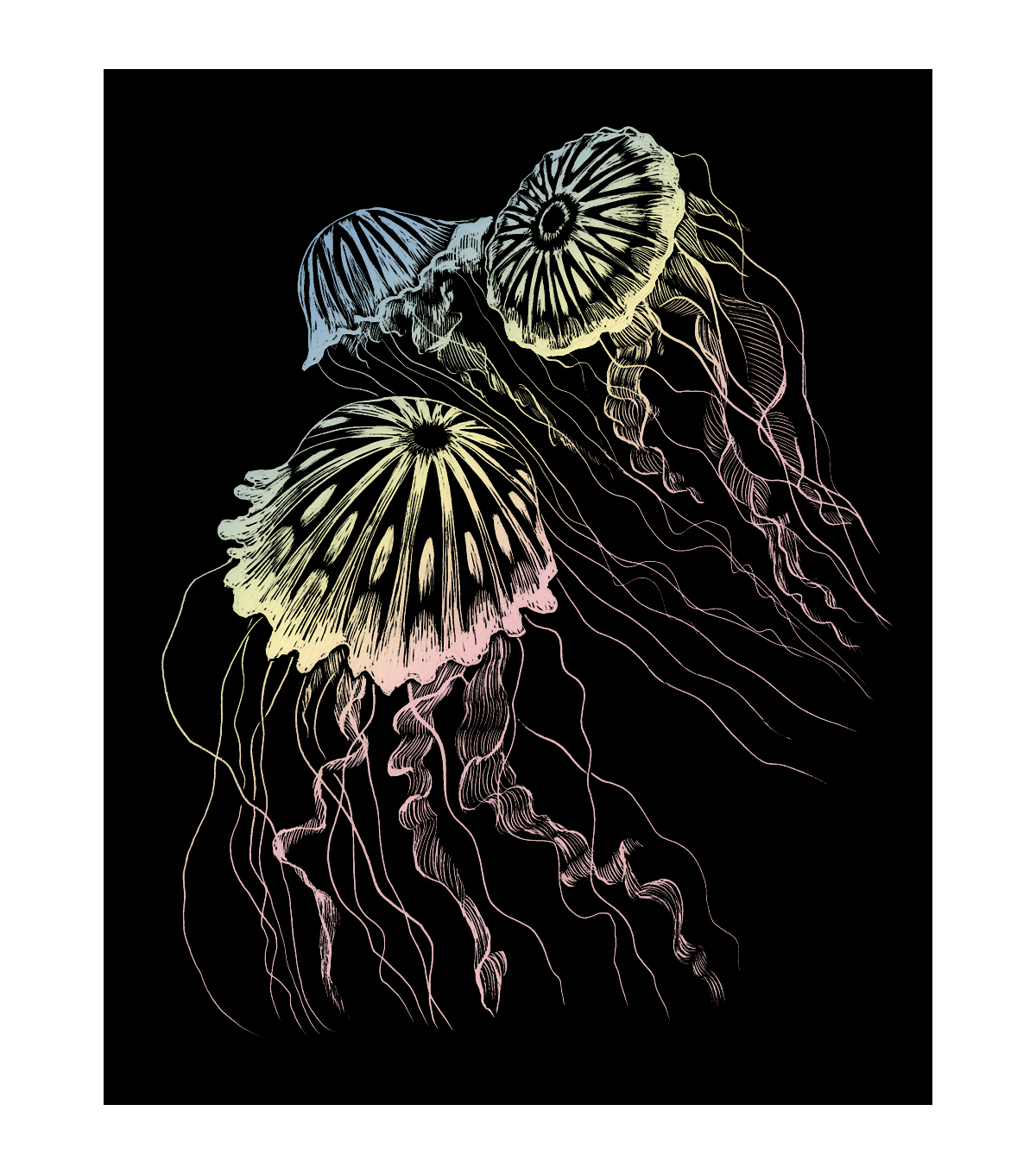 Royal Langnickel Holographic Foil Jellyfish Engraving Art Kit