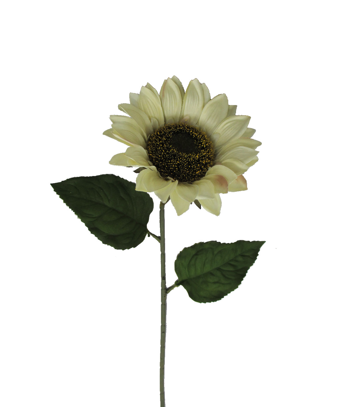 Blooming Autumn 27'' Sunflower Stem-Cream