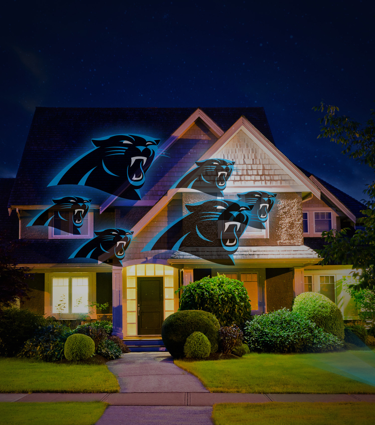 carolina panthers team pride light joann