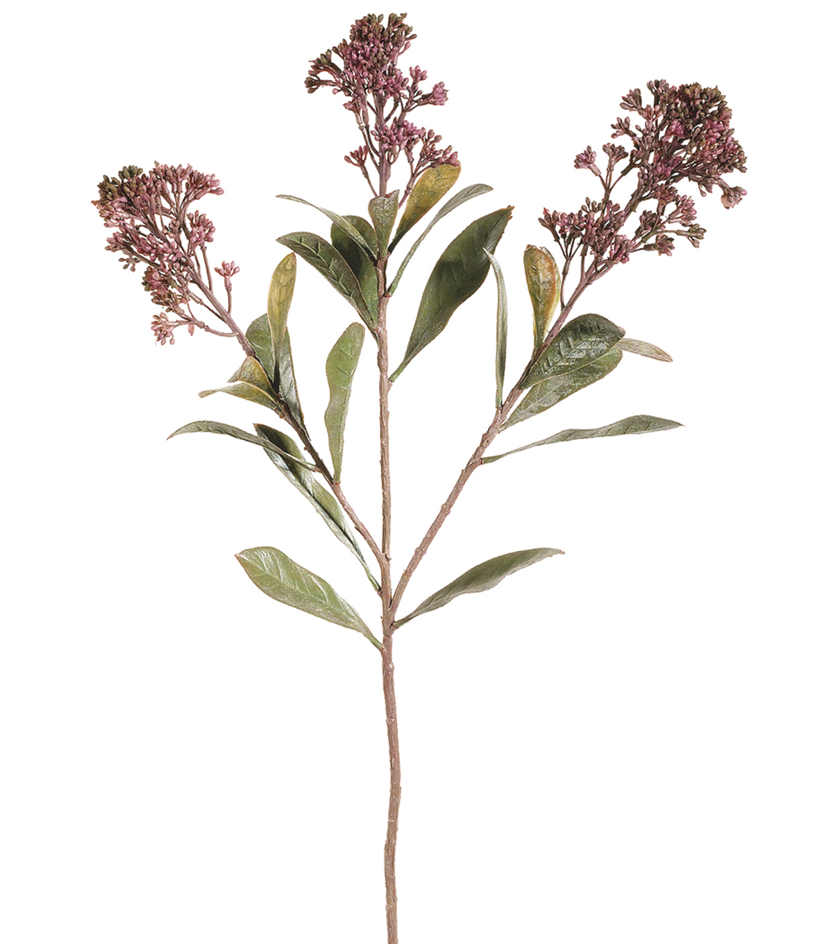 Bloom Room 26\u0022 Skimmia Spray-Mauve