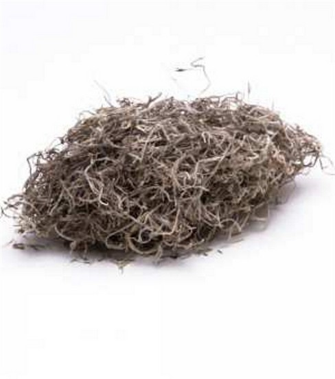 Spanish Moss 1 oz Natural