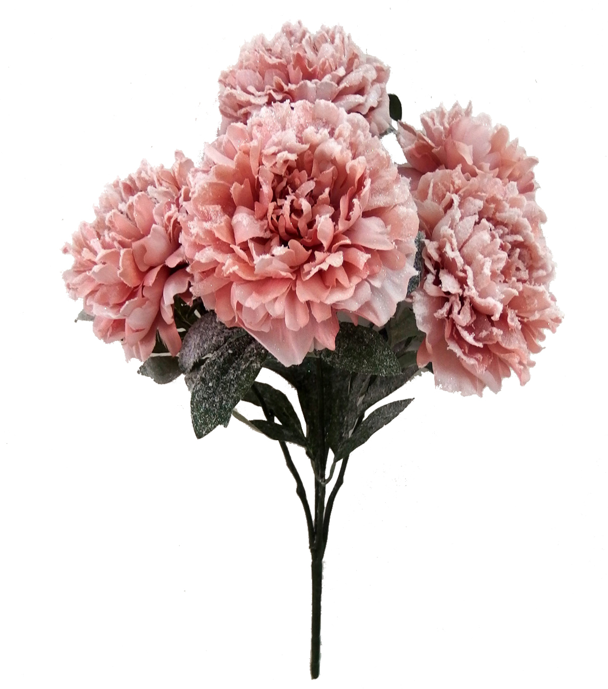 Blooming Holiday Peony Bush With Snow-Pink