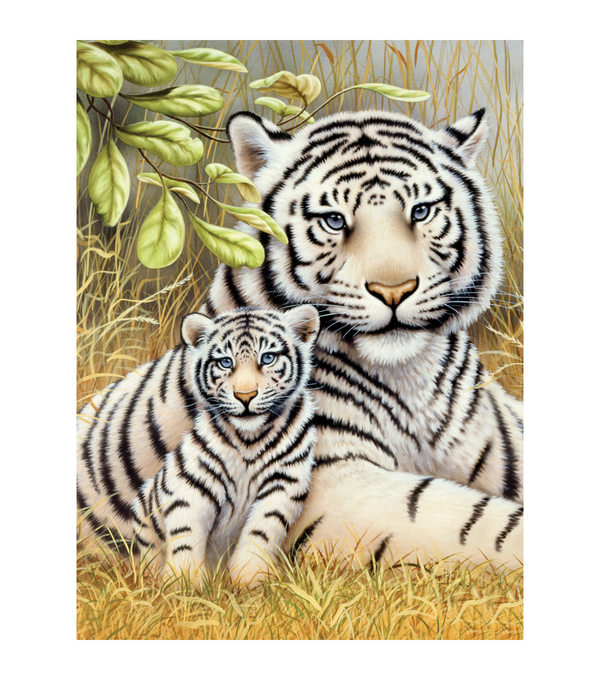 Royal Brush Junior Small Paint By Number Kit White Tiger Pair