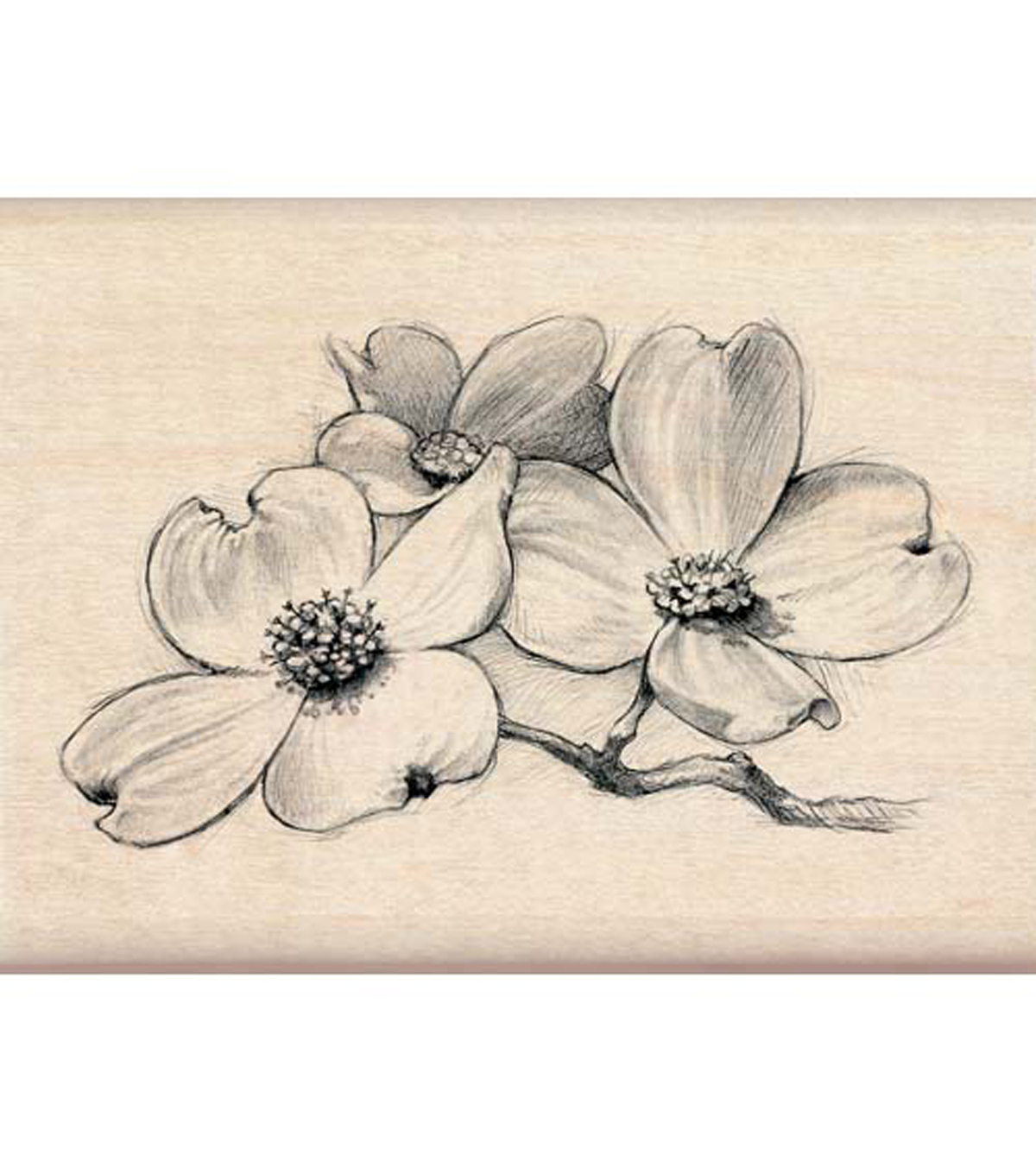 Inkadinkado White Dogwood Flowers Stamp