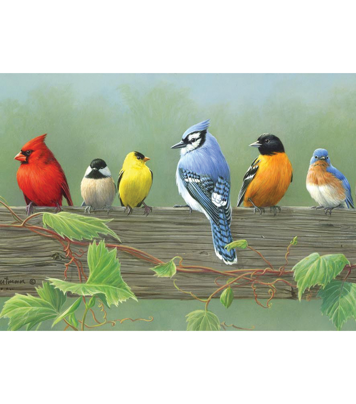 Reeves Paint By Number Artist\u0027s Collection 12\u0022X16-Rail Birds