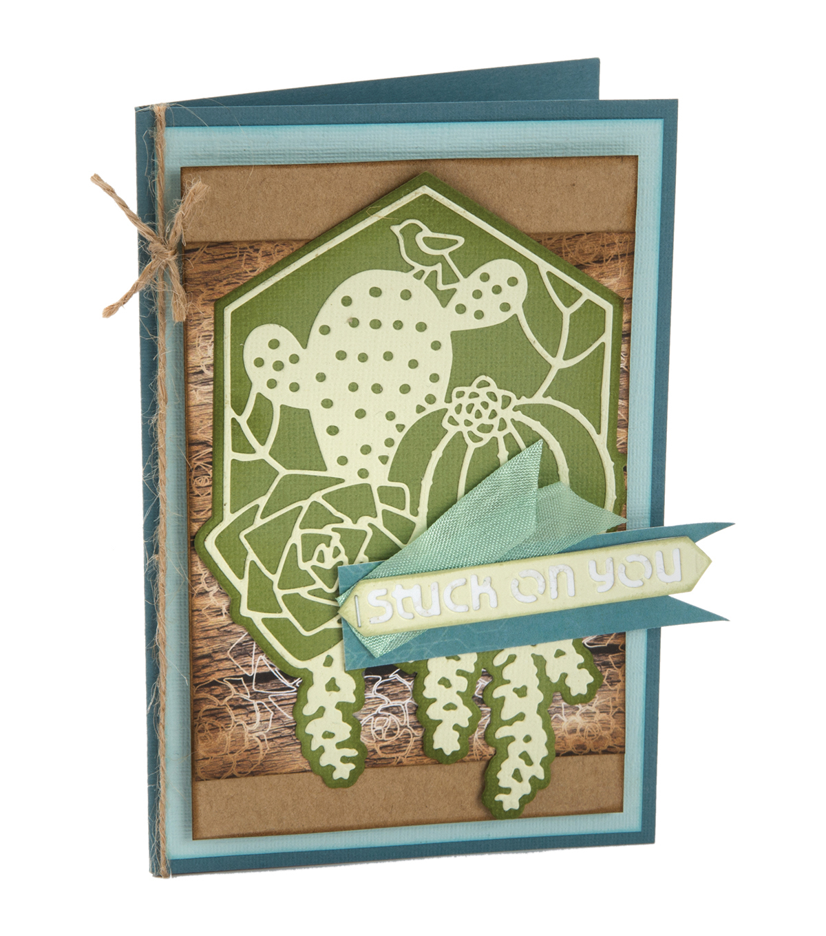 Sizzix® Thinlits™ 3 Pack Dies-Succulent Silhouette