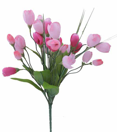 Blooming Spring 18'' Crocus Bush-Pink & Beauty