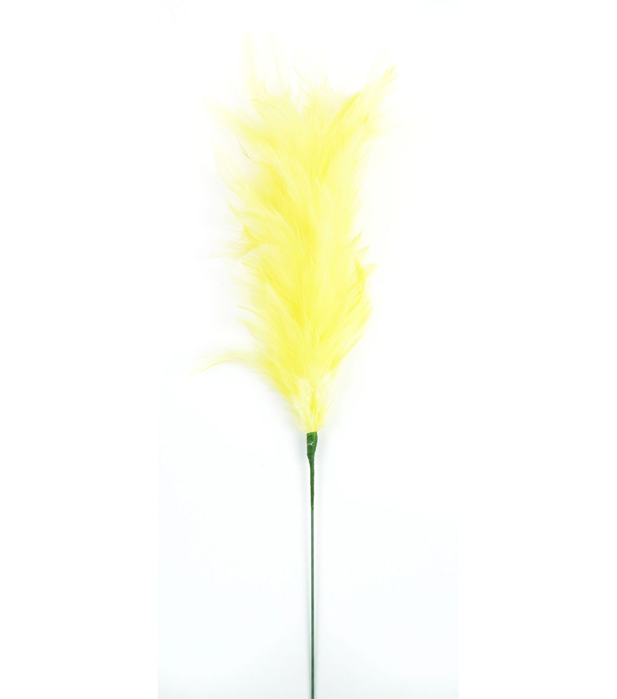 "Bloom Room 24"" Hackle Goose Stem-Baby Yellow"