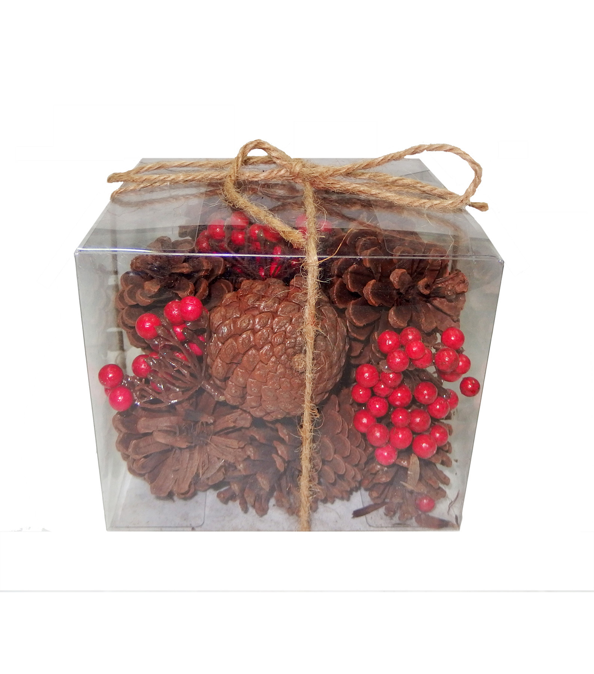 Blooming Holiday Large Natural Pinecones In Box