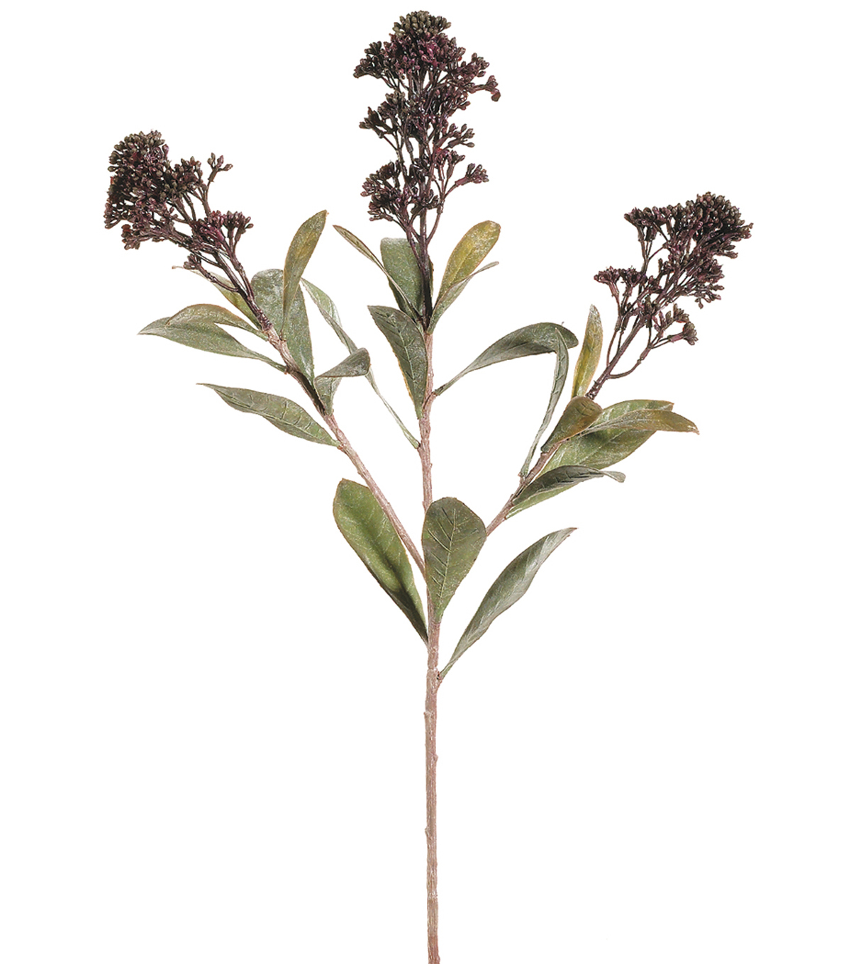 Bloom Room 26\u0022 Skimmia Spray-Burgundy