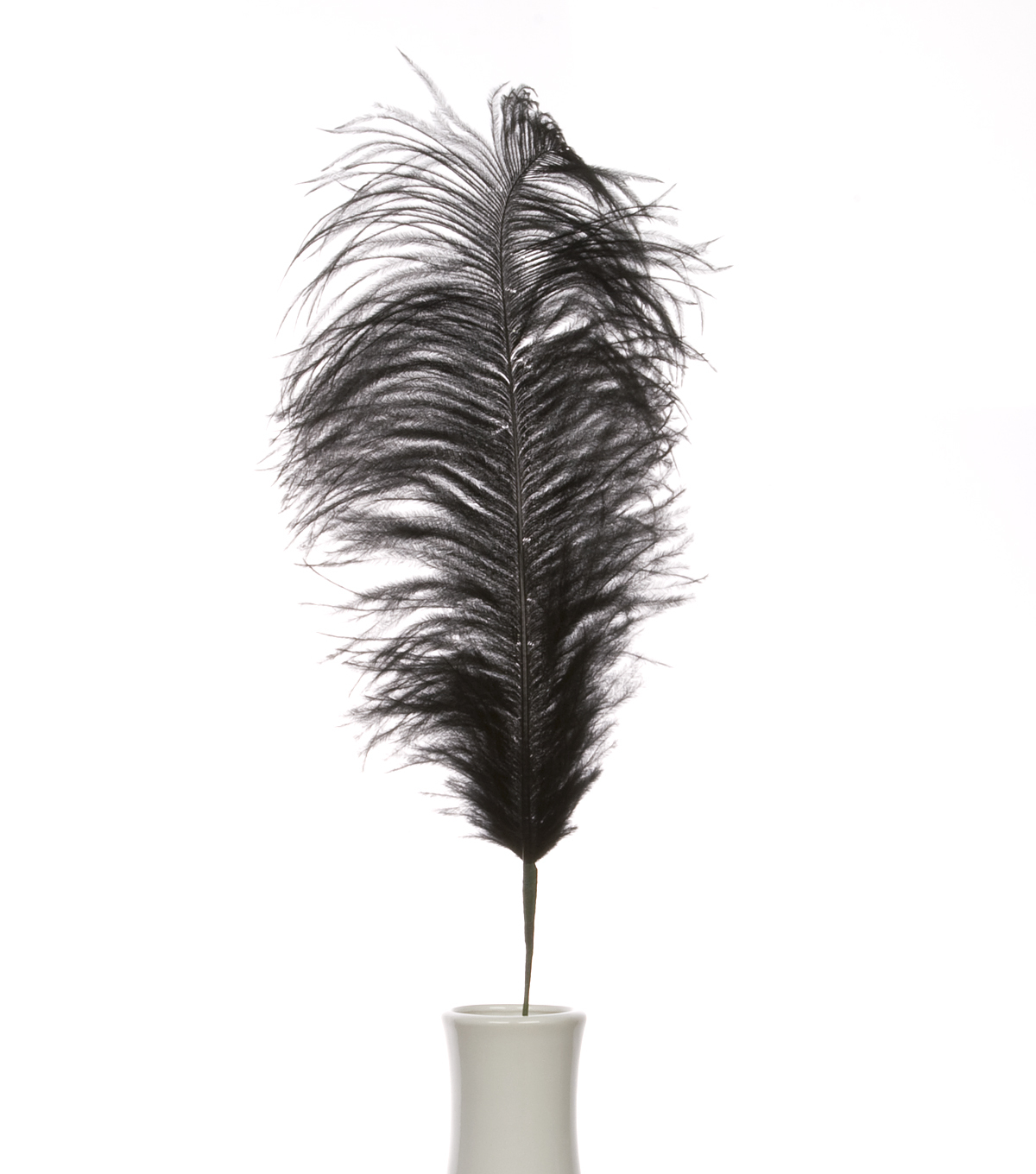 "Bloom Room 30"" Ostrich Feather Floral Stem-Black"