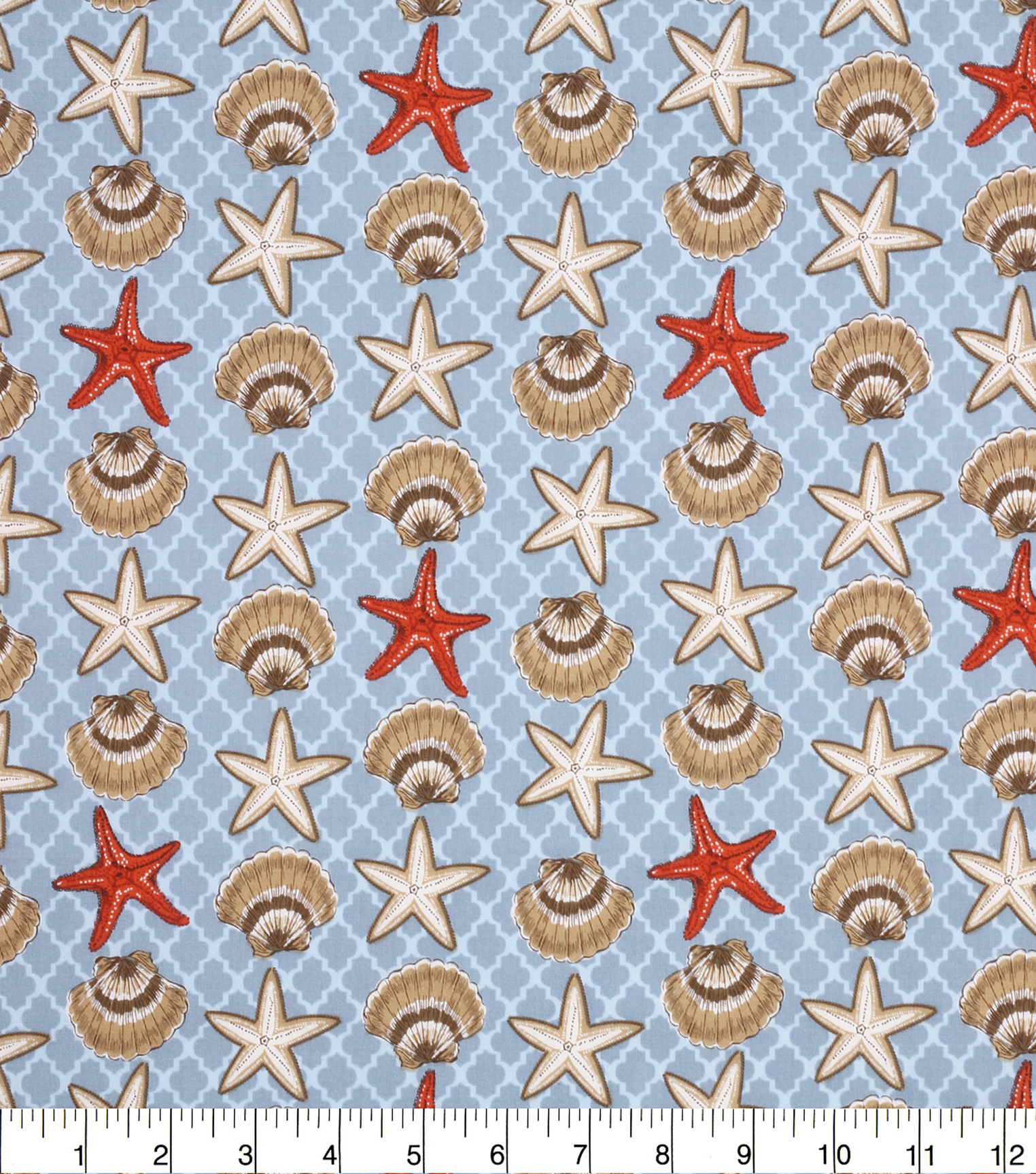 Novelty Cotton Fabric 43''-Seashells & Starfish