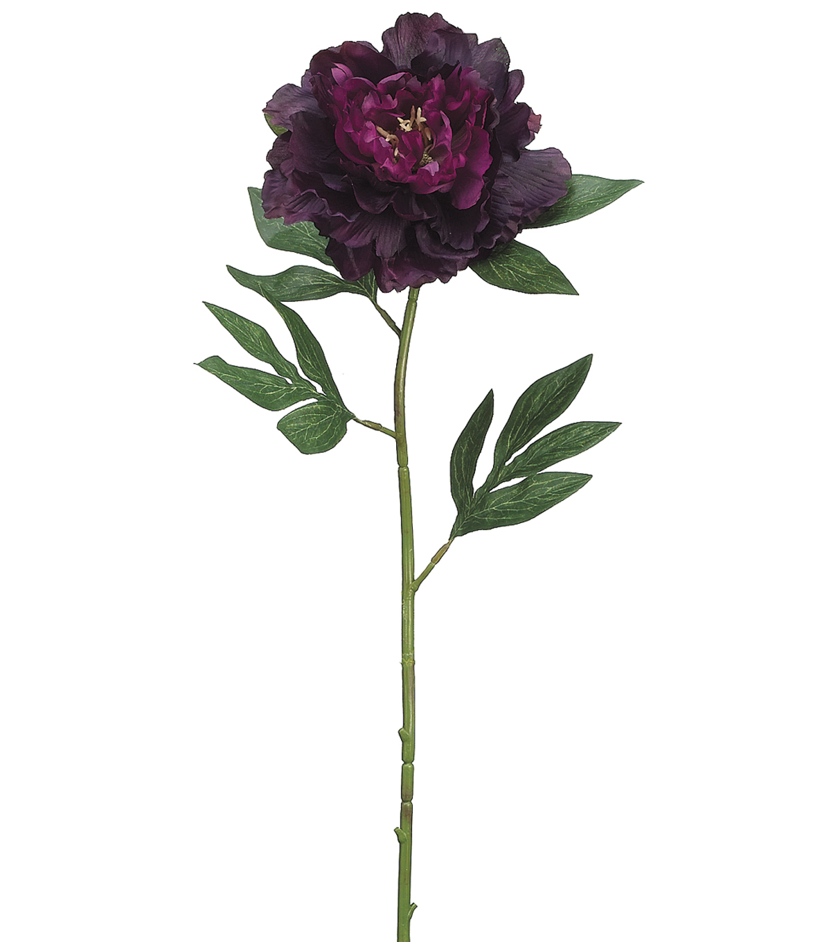 Bloom Room 27\u0022 Pearl Peony Stem-Purple