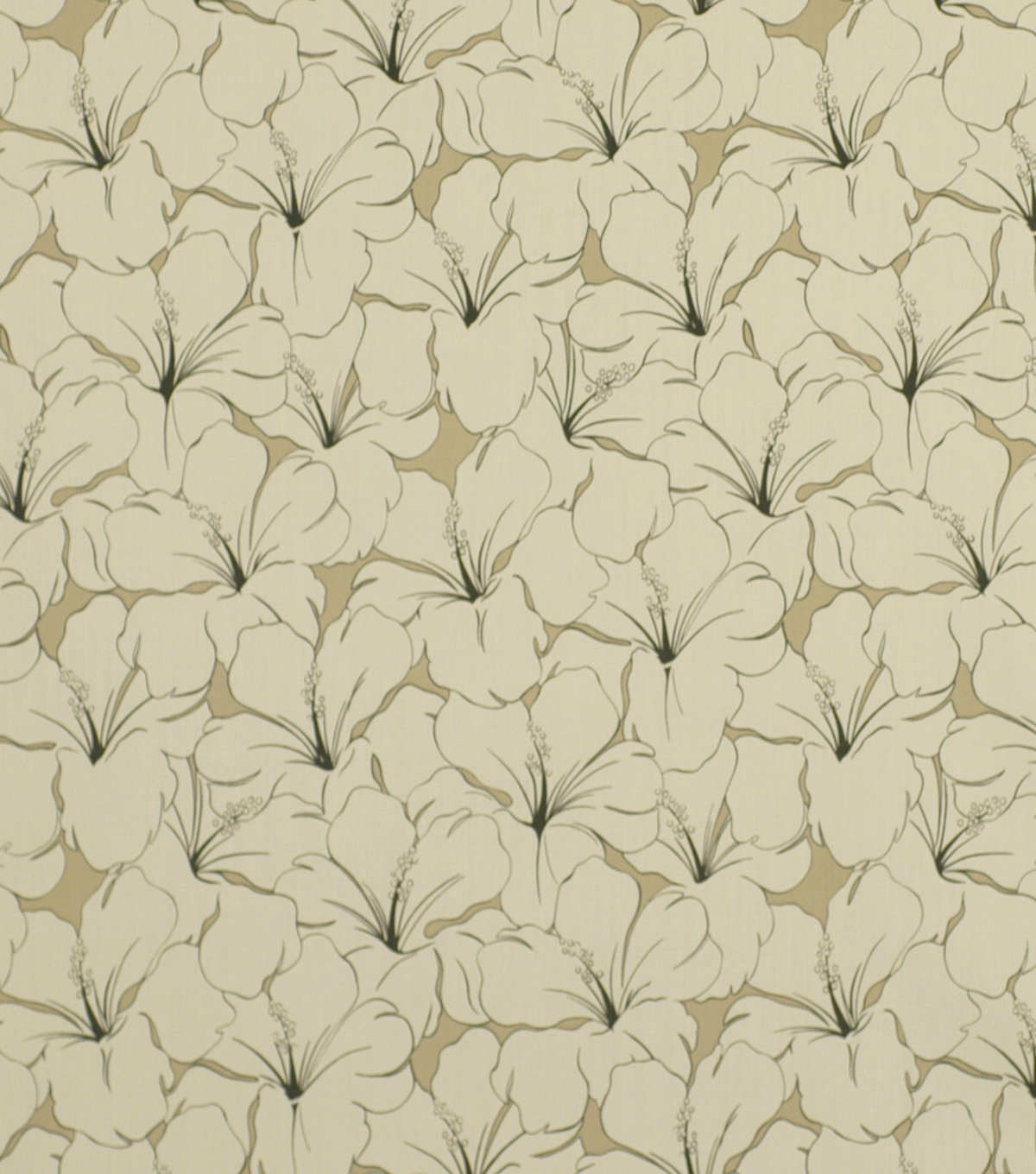 Robert Allen @ Home Outdoor Fabric 54\u0022-Sun Coast Kohl