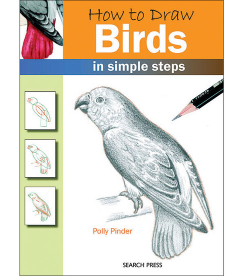 How To Draw Birds