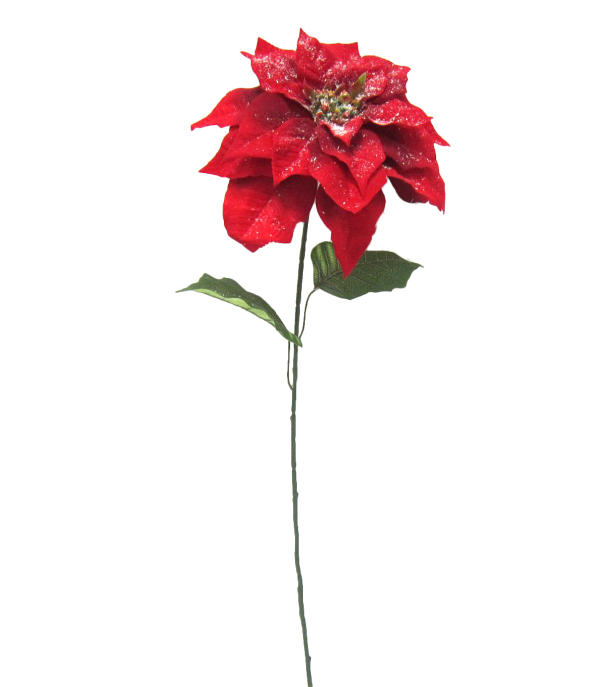 Blooming Holiday Snow Poinsettia Stem