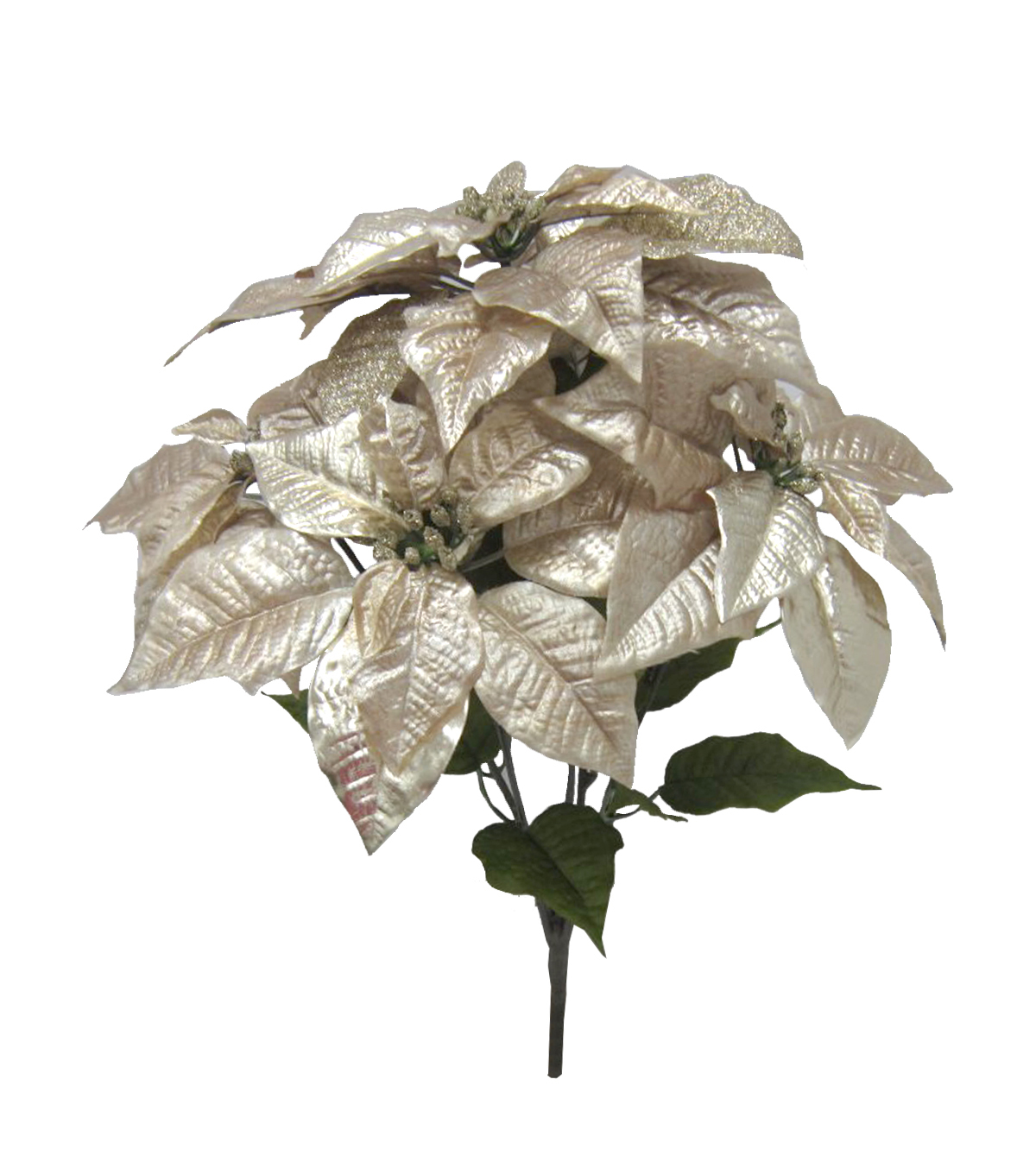 Blooming Holiday Poinsettia Bush-Silver