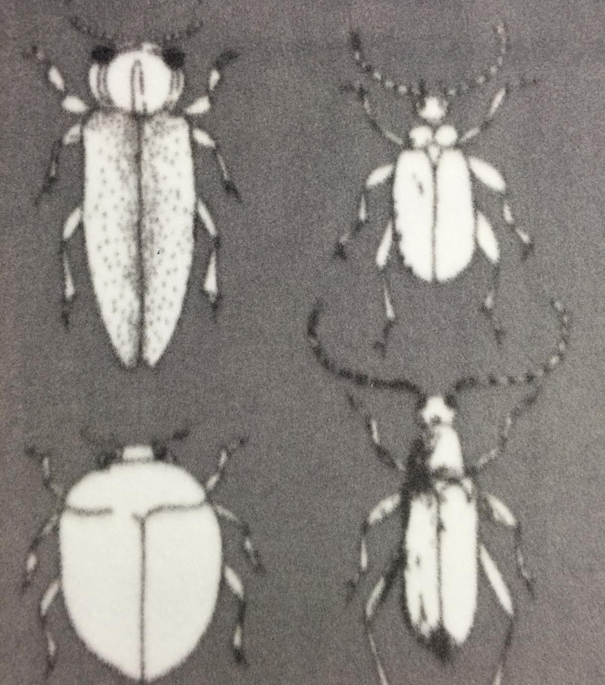 "Anti-Pill Fleece Fabric 59""-Black & White Insects"