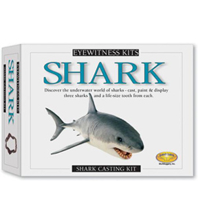 Eyewitness Kit- Shark