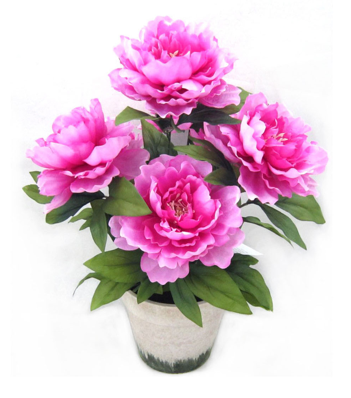 Bloom Room Potted Peony-Fuchsia Pink