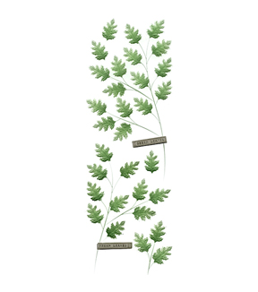Martha Stewart Green Leaves Millinery Stickers