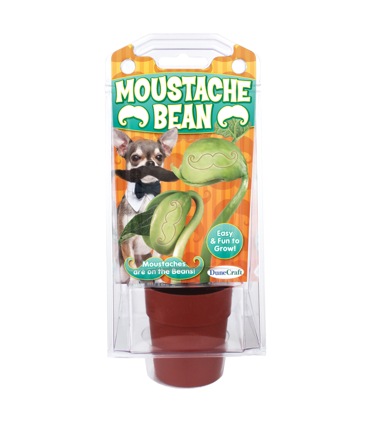 Moustache Bean Message Bean