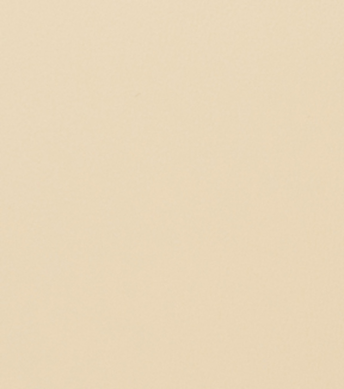 Home Decor 8\u0022x8\u0022 Fabric Swatch-Signature Series Boyd Beige