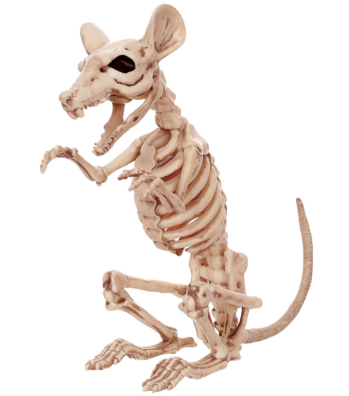 The Boneyard Halloween 11\u0027\u0027 Skeleton Rat