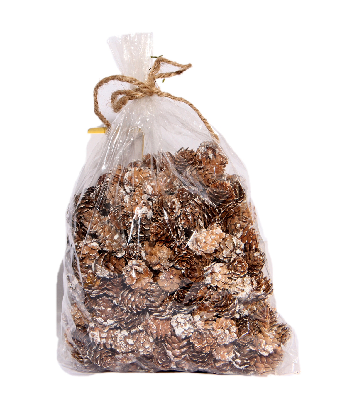 Blooming Holiday Pinecones In Bag