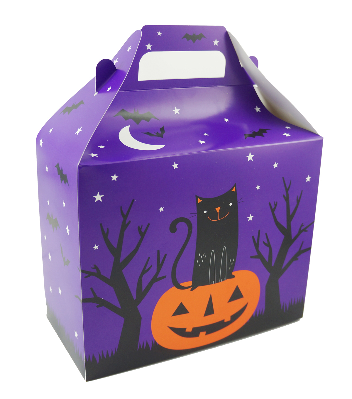 Cheer & Co. Halloween 2 pk Large Gable Boxes-Pumpkin & Cat