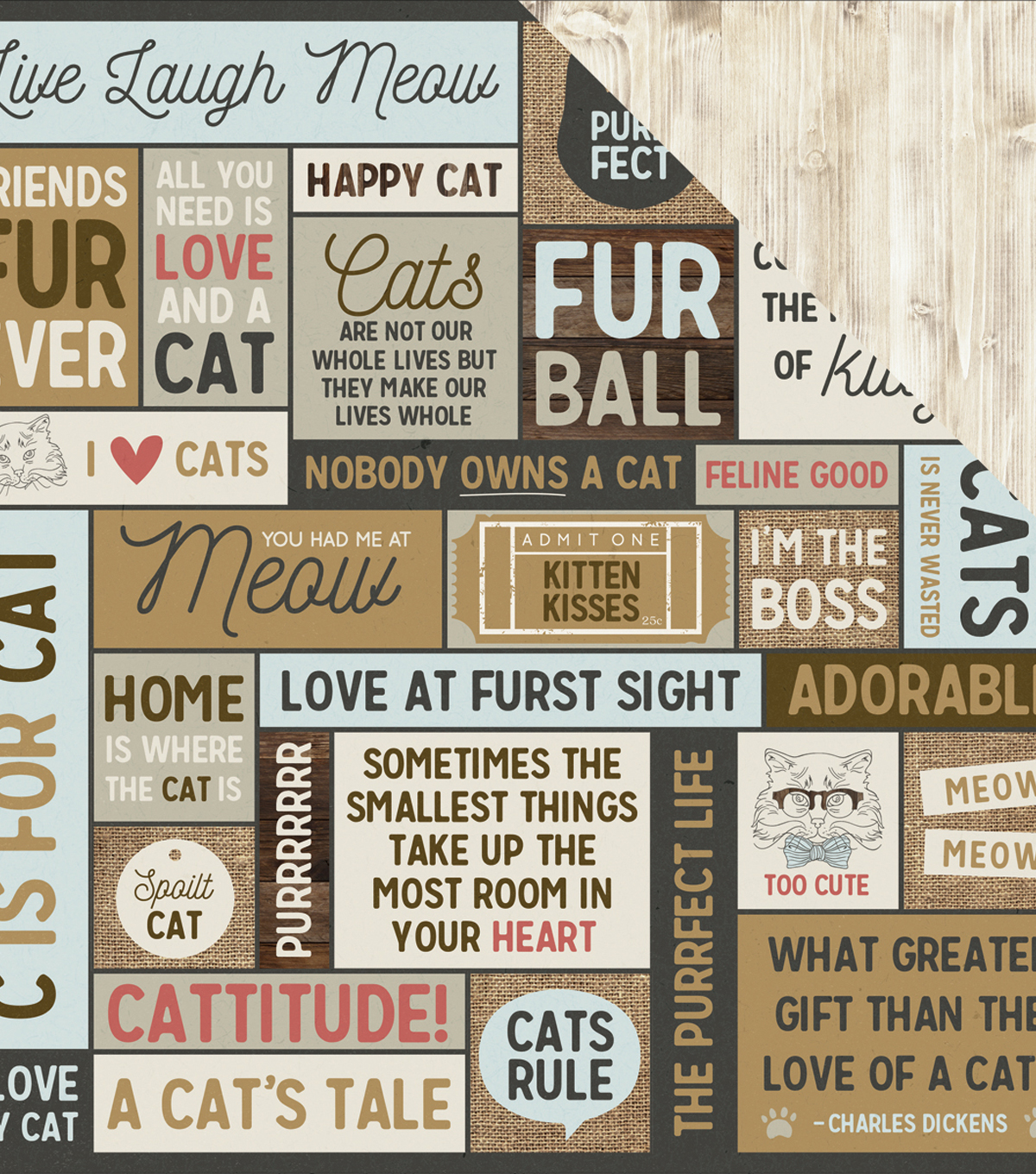 "Pawfect Double-Sided Cardstock 12""X12""-Meow"
