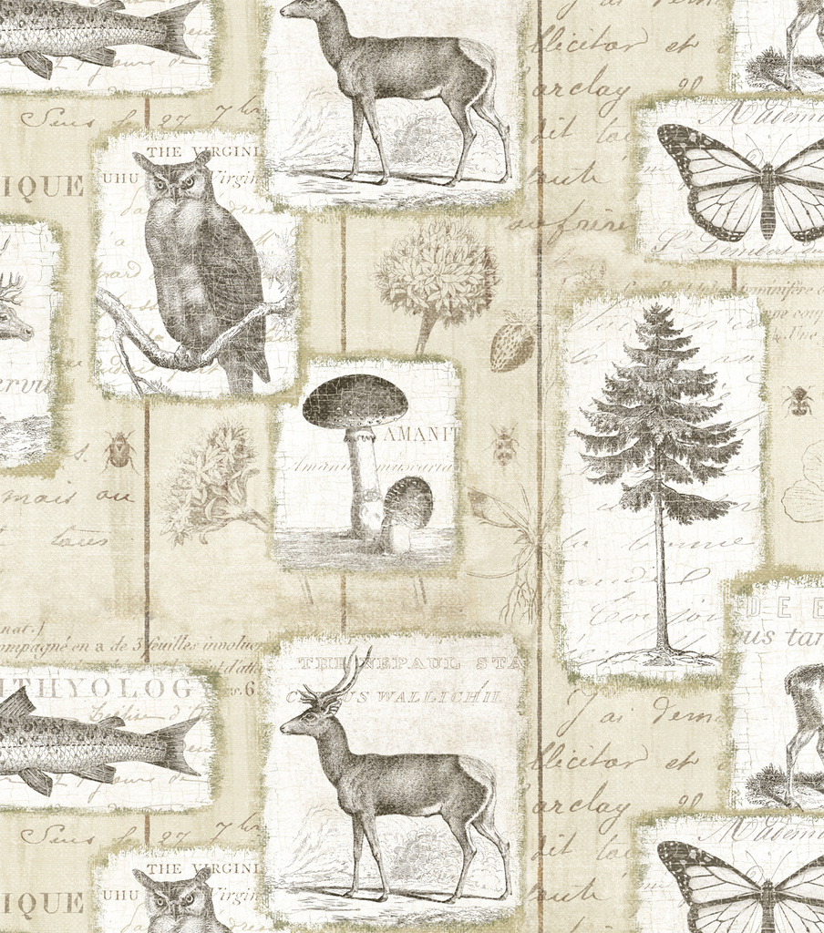 Novelty Cotton Fabric-Woodland Collage