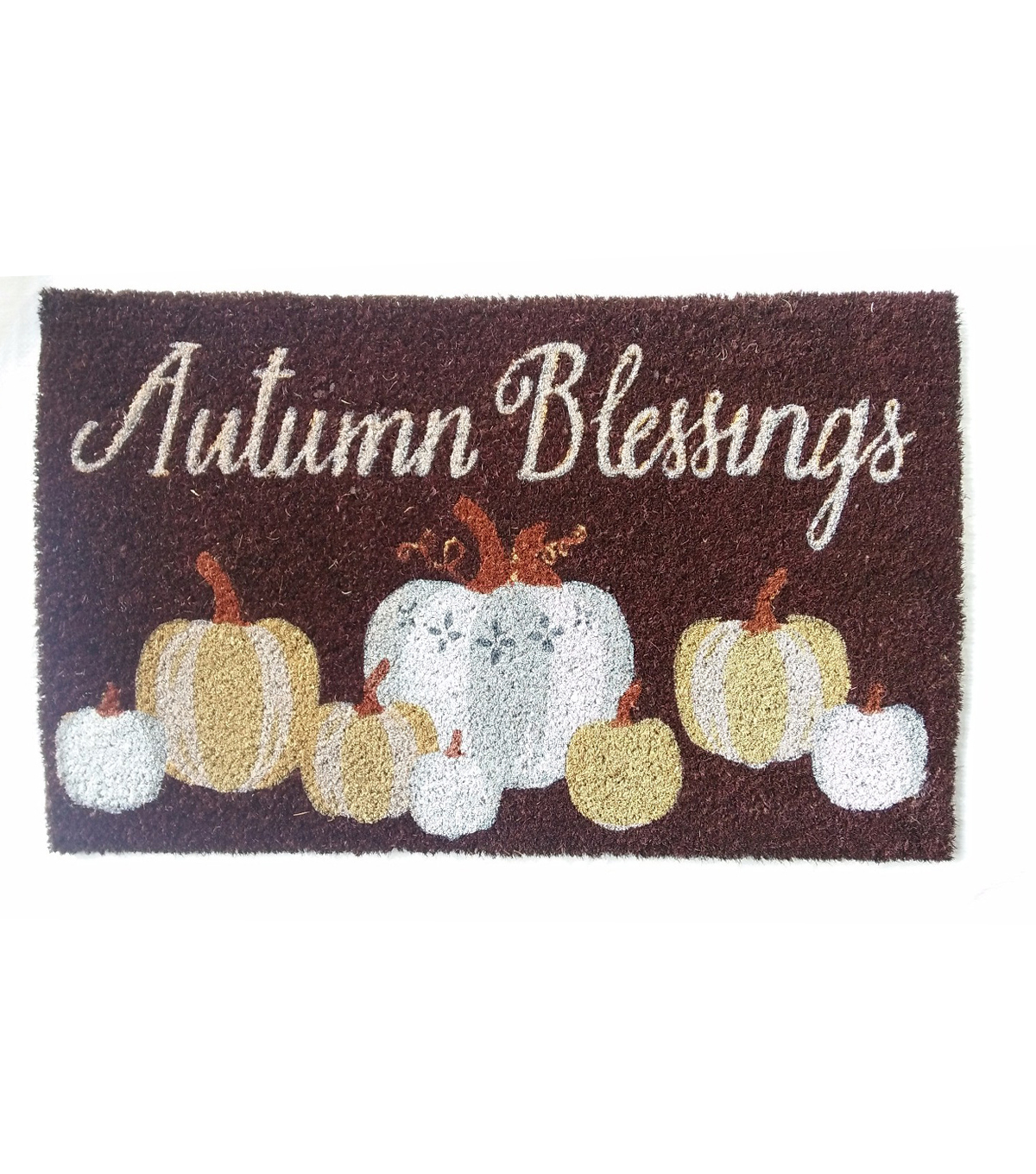 Fall Into Color 18''x30'' Coir Mat-Autumn Blessings