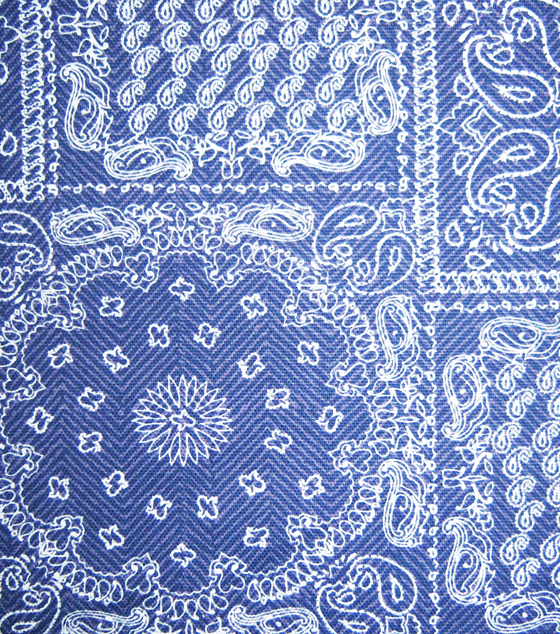 Home Essentials Print Fabric 45\u0022-On The Farm Bandana Blue