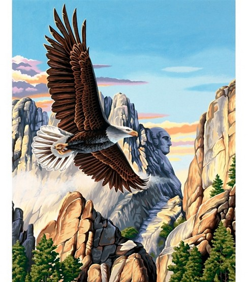 Paint By Number Kit 16\u0022X20\u0022-Soaring Eagle