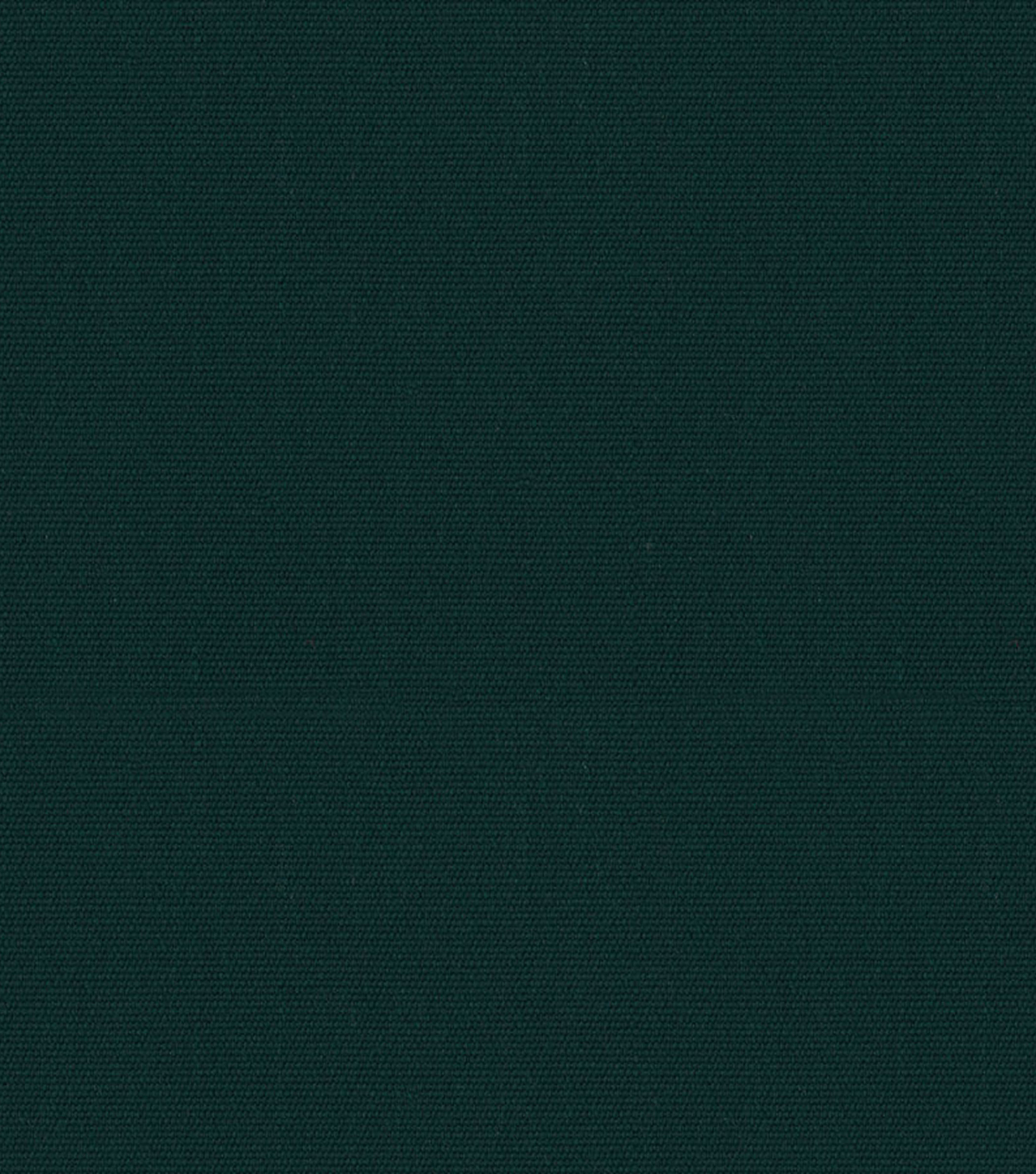 Sunbr Plus 60 8437 Forest Green Swatch