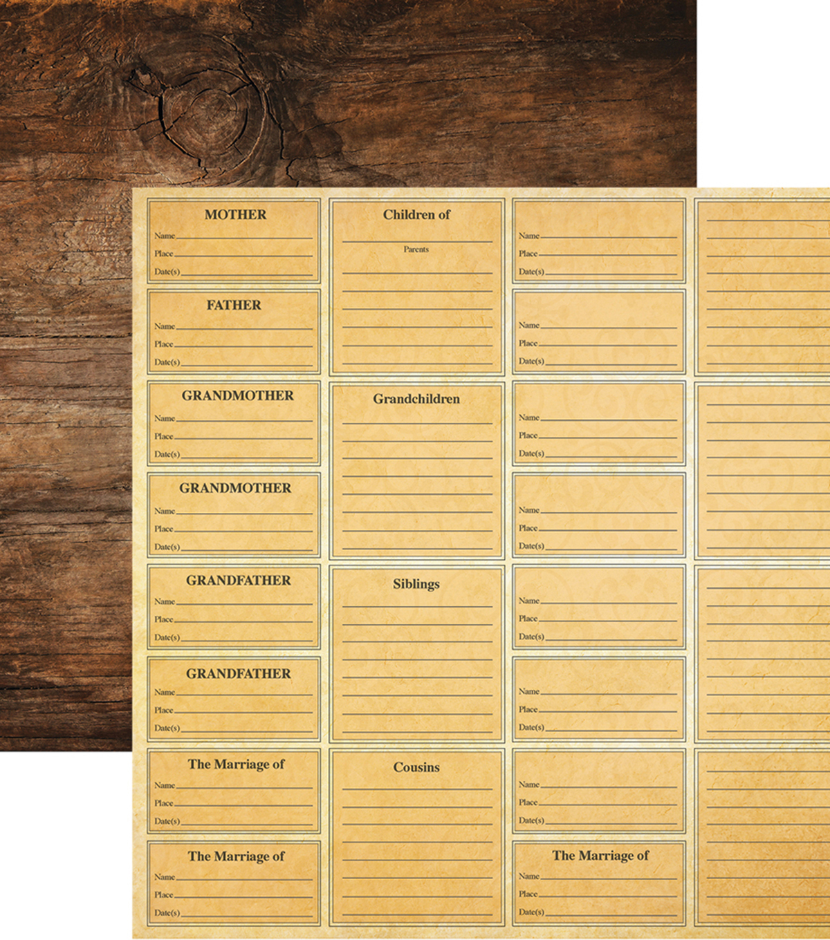 Family Tree Double-Sided Cardstock 12\u0022X12\u0022-Family Heritags