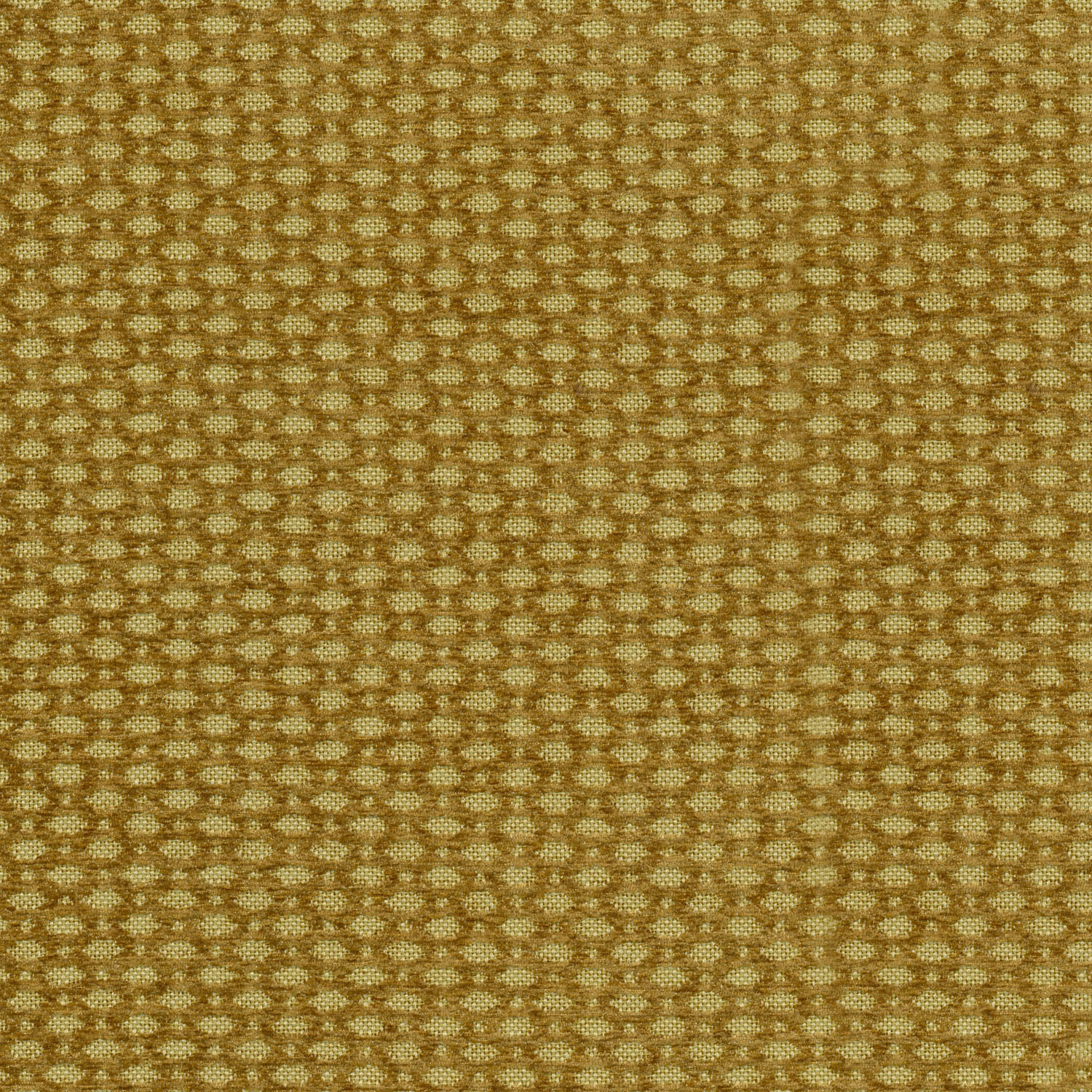 "Home Decor 8""x8"" Fabric Swatch-IMAN Home Eden Topaz"