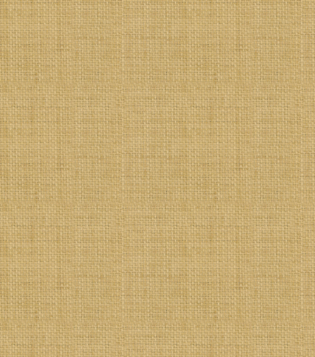 Home Decor 8\u0022x8\u0022 Fabric Swatch-Solarium Rave Birch