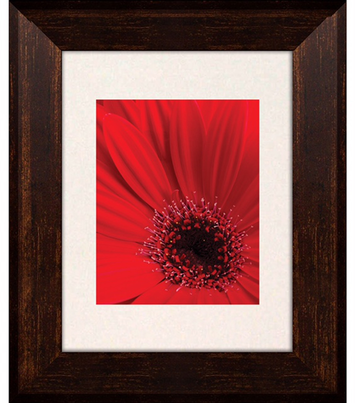 Luxor Frame 11x14-Brown