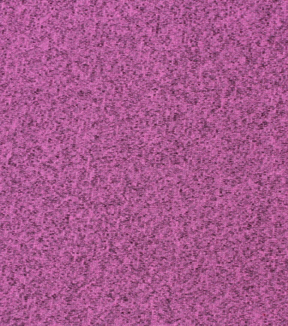 Sweater Fleece Fabric 59\u0022-Fuchsia Heathered