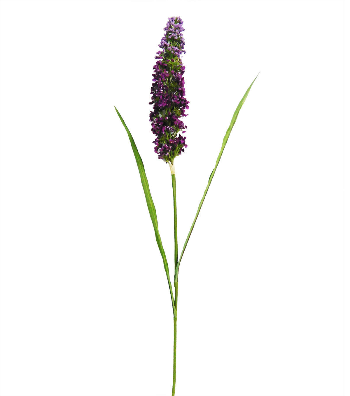 Blooming Spring 35\u0022 Veronica Stem-Purple