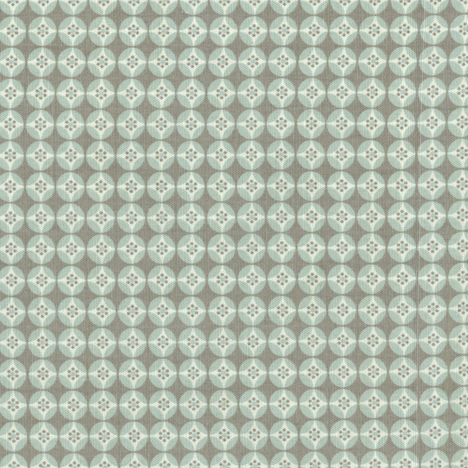 "P/K Lifestyles Print Fabric 54""-Strobe/Bliss"