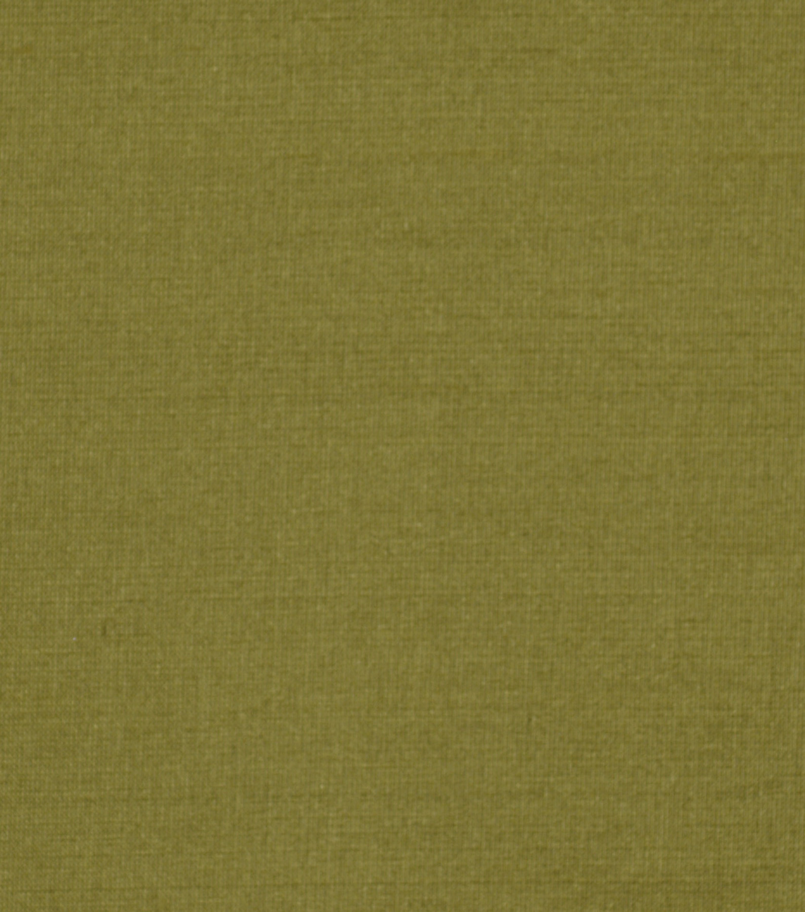 Home Decor 8\u0022x8\u0022 Fabric Swatch-Solid Fabric Signature Series Kalin Leaf