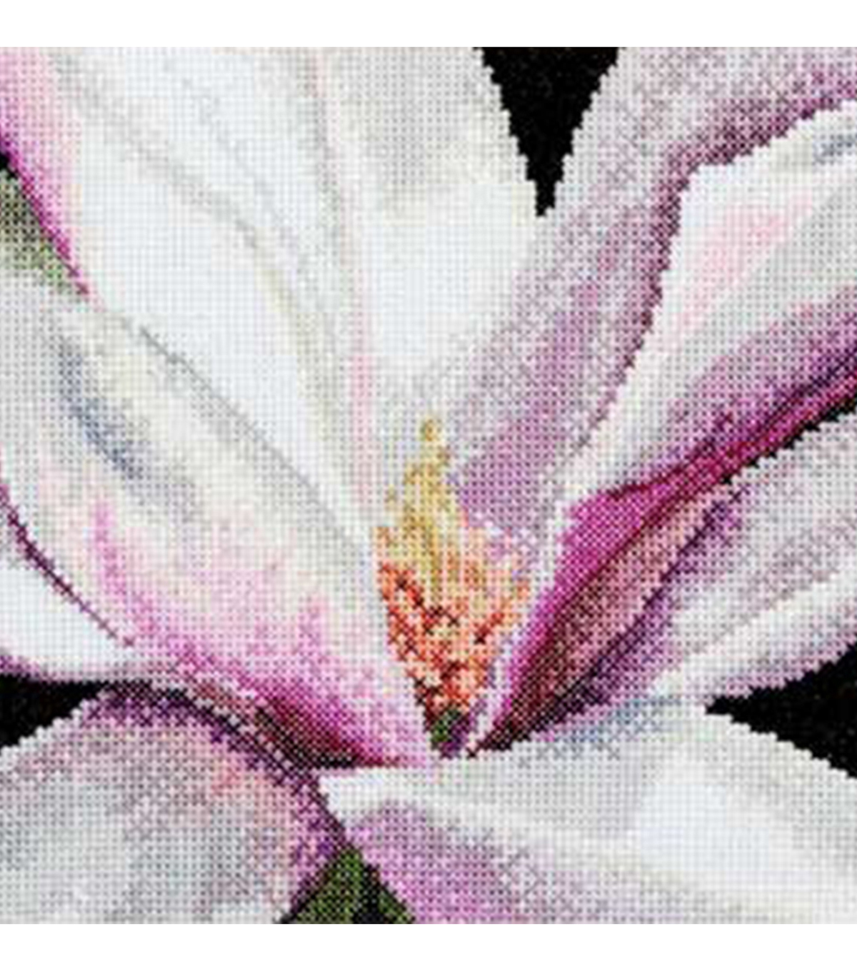 Magnolia On Aida Counted Cross Stitch Kit 18 Count
