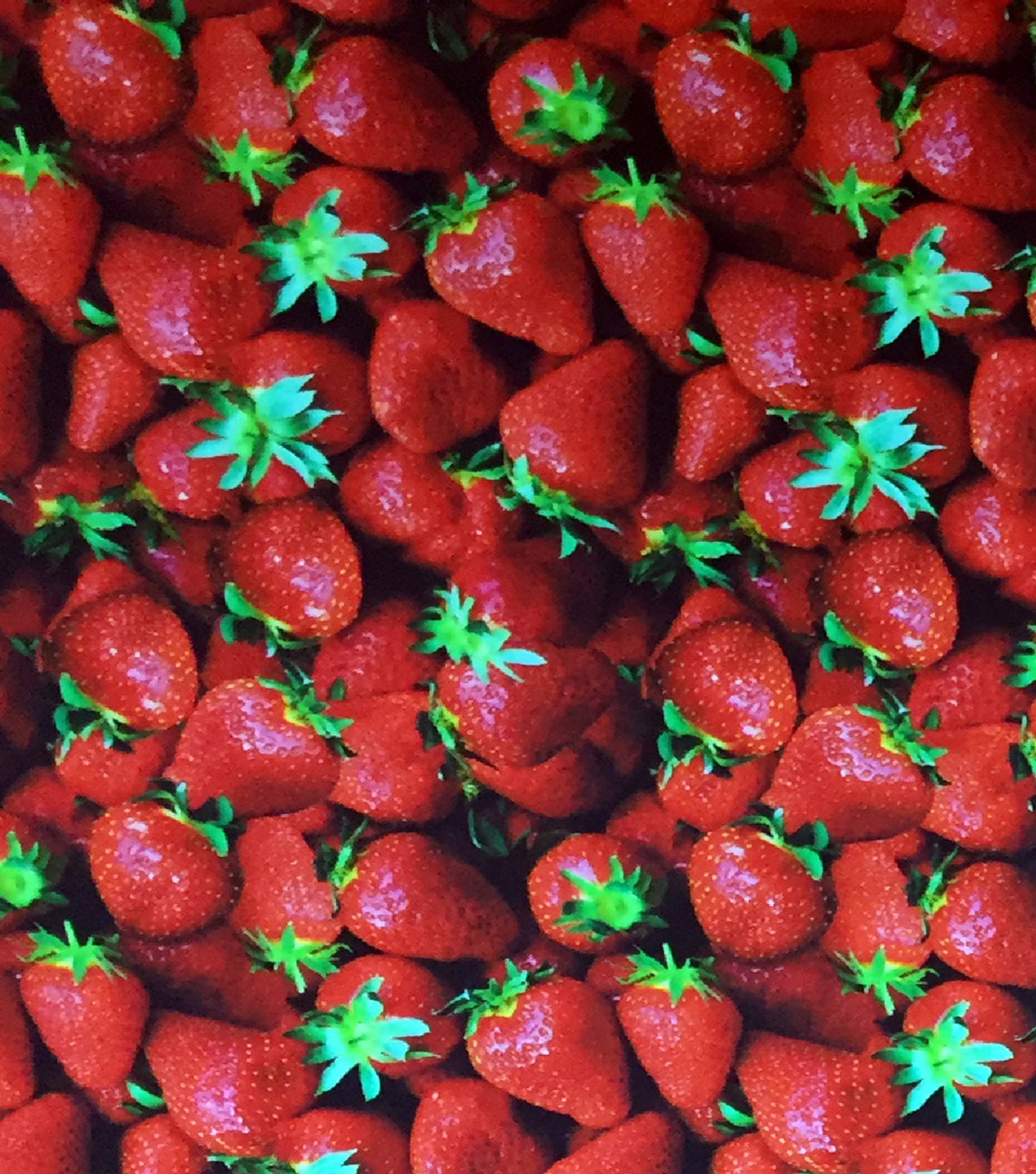 Novelty Cotton Photo Real Fabric 44\u0022-Strawberries